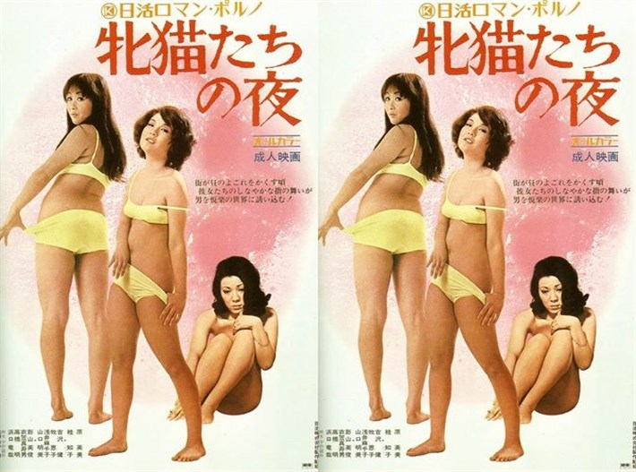 Mesunekotachi no yoru (1972)